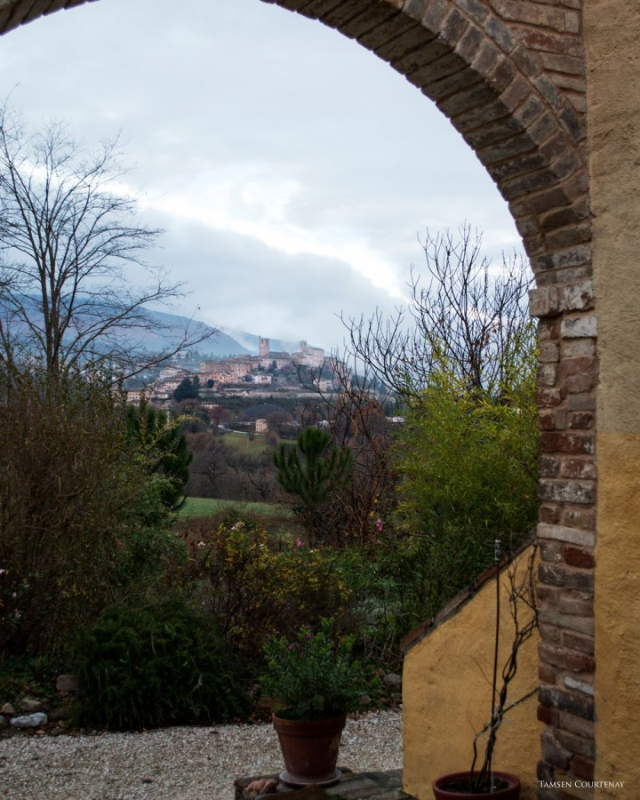 view-from-cortile