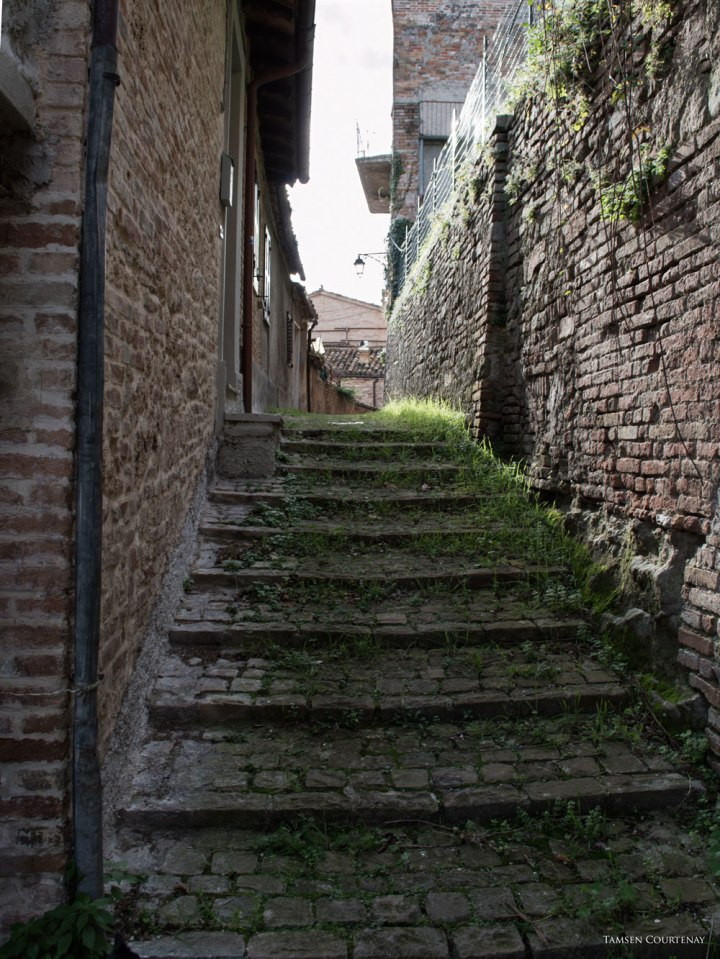 sarnano-overgrown-grass-on-steps
