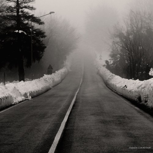 snow-long-misty-road-sq